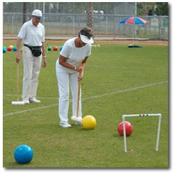 how to set up a croquet field